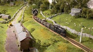 Shunting the Yard – Yorkshire Dales Model Railway